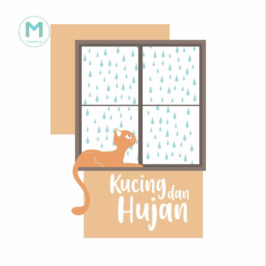 Kucing hujan