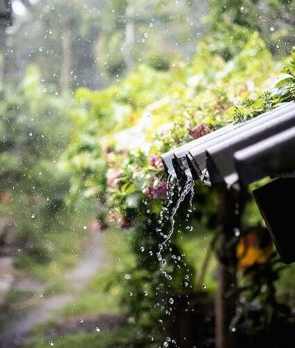 Memaknai Kehidupan Lewat Filosofi Hujan