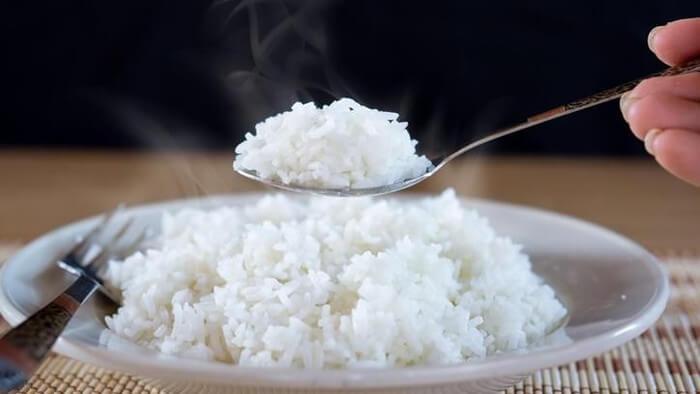 Keberagaman Makanan